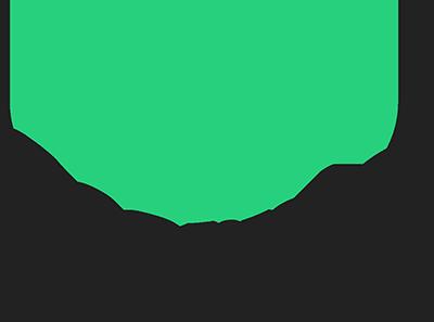 Logo for D.E. Scorpio Corporation